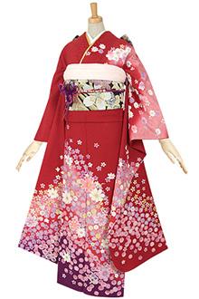 R054 赤 桜吹雪☆(絹)(s)