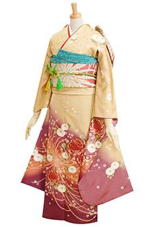 R061 金茶 大菊紫ぼかし(R738)(R1584)