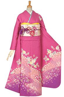R075 【訳あり】ピンクラメ 菊と桔梗☆(絹)(S)