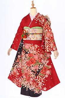 R087 赤 桜づくし(R336 R741)