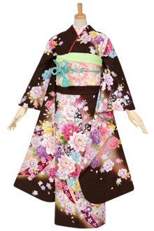 R1031 茶 牡丹と蝶に熨斗☆(絹)(宅)