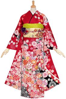 R1096 【訳あり】赤 疋田桜に熨斗(絹)