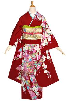 R1174 赤 八重桜に熨斗☆(絹)(宅)