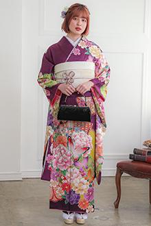R1209 紫 菊牡丹に蝶(絹)