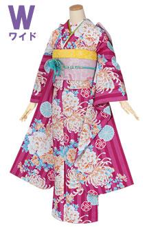 R1257 赤紫 ストライプ牡丹と菊(W)