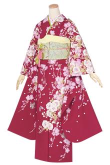 R1339 【訳あり】赤 枝垂桜☆(宅)(絹)