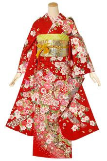 R1413 【訳あり】赤 熨斗に花桜☆(絹)(宅)
