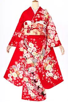 R1456 赤 熨斗に花丸紋(R1601)