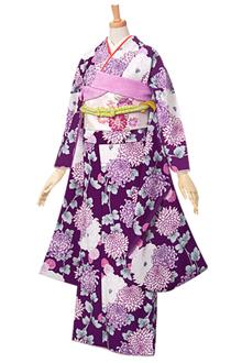 R147 紫 菊浪漫☆