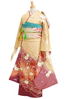 R1584 【訳あり】金茶 大菊紫ぼかし☆(R738)(R061)