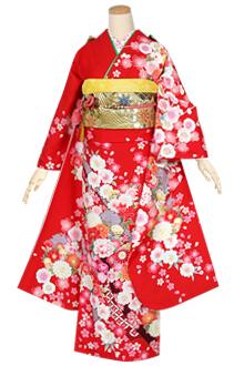 R1601 【訳あり】赤 熨斗に花丸紋(R1456)
