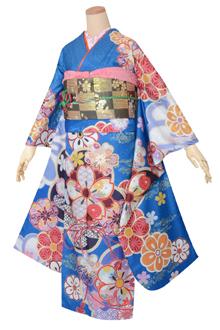 R1691 【訳あり】青 菊桜(R1593)
