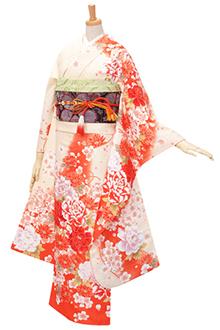 R1756 【訳あり】クリーム オレンジぼかし 牡丹と菊桜(R305)