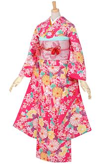 R1762 【訳あり】ピンク 熨斗目に菊と桜(R435)☆