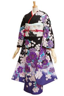 R1766 【訳あり】黒 紫ぼかし 乙女桜(R239)☆