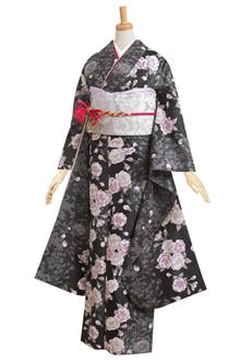 R185 黒 大菊と八重桜(藤色系)