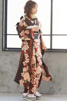 R1850 【訳あり】茶 桜牡丹に藤(R651)