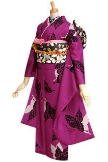 R214 紫 モダン蝶々
