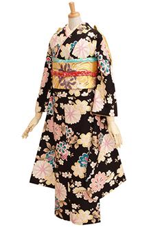R241 黒 乙女浪漫 桜と菊☆