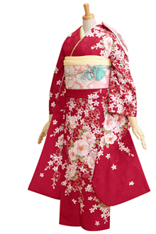 R292 【訳あり】ルビーの赤 八重桜(R086)