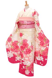R304 クリームとピンクぼかし 乙女桜(R353)