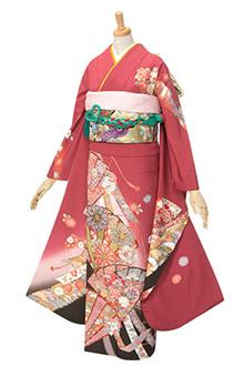 R323 【訳あり】赤 扇面大輪菊と熨斗目☆(絹)