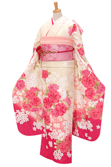 R353 【訳あり】クリームとピンクぼかし 乙女桜(R304)