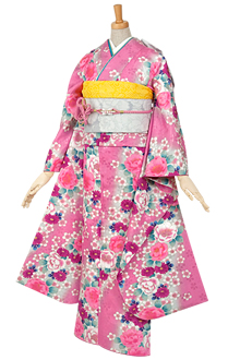 R357 【訳あり】ピンク・グリーンぼかし に桜と菊(R195)☆