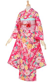 R435 ピンク 熨斗目に菊と桜(R1762)
