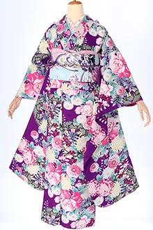 R436 紫 源氏車に牡丹と菊