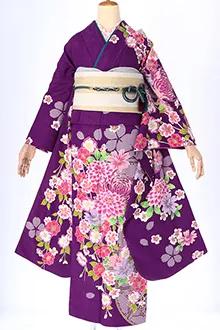 R471 紫 絞り柄に菊と小花