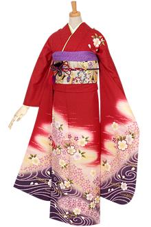 R610 赤 霞に桜☆(絹)(宅)
