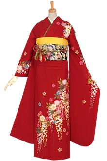 R621 【訳あり】赤 桜と藤☆(絹)(宅)