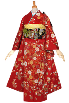 R868 赤 菊花の舞☆(絹)(宅)