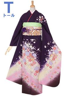 R951 【訳あり】紫 かのこ桜流水に毬☆(絹)(宅)