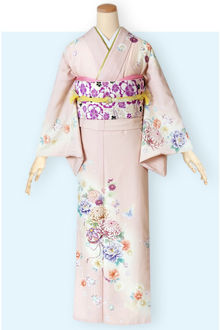 H611 ピンク クリームぼかし 菊と手鞠