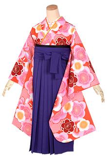 小学生袴(女の子)レンタルA168